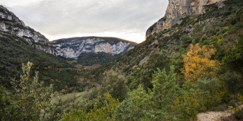 Vallon de Tiourre