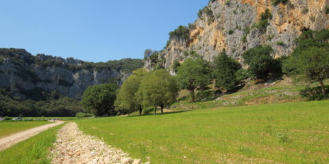 Sentier amont accès Pont d'Arc 2